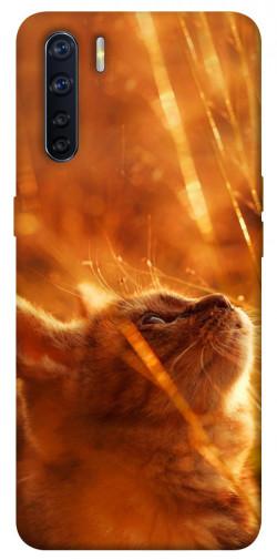 Чехол itsPrint Magic cat для Oppo A91