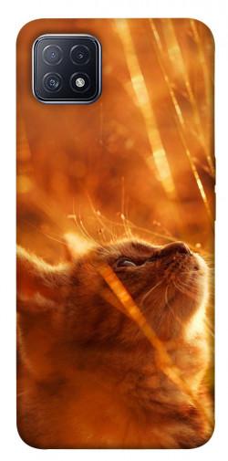Чехол itsPrint Magic cat для Oppo A73