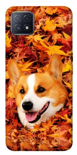 Чехол itsPrint Корги в листьях для Oppo A73