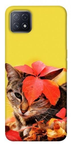 Чехол itsPrint Осенний котик для Oppo A73
