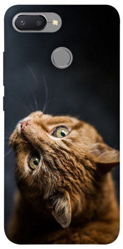Чехол itsPrint Рыжий кот для Xiaomi Redmi 6