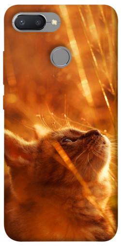 Чехол itsPrint Magic cat для Xiaomi Redmi 6