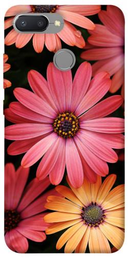 Чехол itsPrint Осенние цветы для Xiaomi Redmi 6