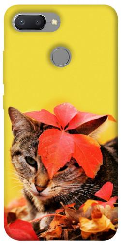 Чехол itsPrint Осенний котик для Xiaomi Redmi 6