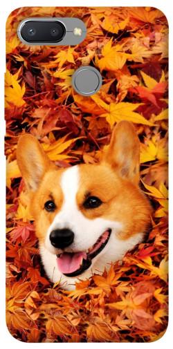 Чехол itsPrint Корги в листьях для Xiaomi Redmi 6