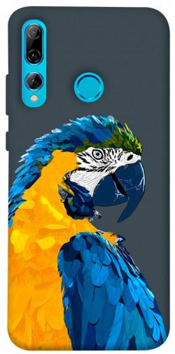 Чехол itsPrint Попугай для Huawei P Smart+ 2019