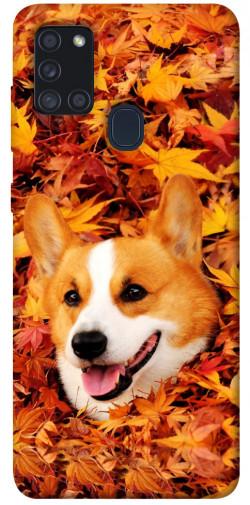 Чехол itsPrint Корги в листьях для Samsung Galaxy A21s