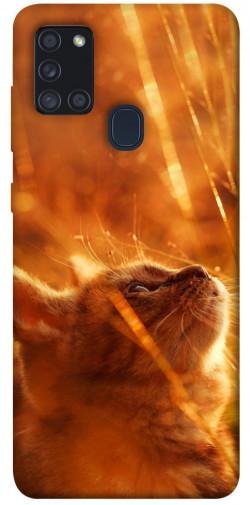 Чехол itsPrint Magic cat для Samsung Galaxy A21s