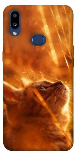 Чехол itsPrint Magic cat для Samsung Galaxy M01s