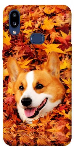Чехол itsPrint Корги в листьях для Samsung Galaxy M01s