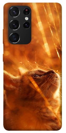 Чехол itsPrint Magic cat для Samsung Galaxy S21 Ultra
