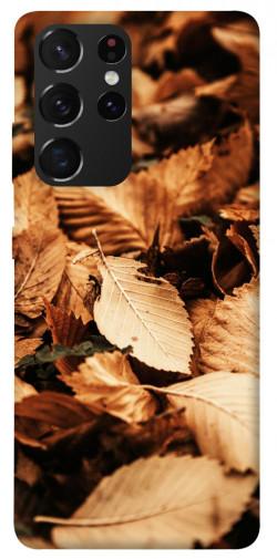 Чехол itsPrint Опавшая листва для Samsung Galaxy S21 Ultra