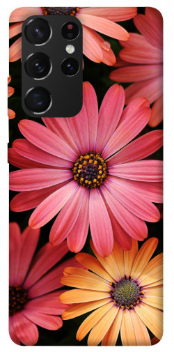 Чехол itsPrint Осенние цветы для Samsung Galaxy S21 Ultra