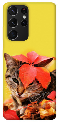 Чехол itsPrint Осенний котик для Samsung Galaxy S21 Ultra