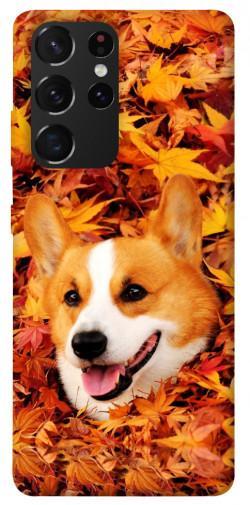 Чехол itsPrint Корги в листьях для Samsung Galaxy S21 Ultra