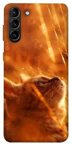 Чехол itsPrint Magic cat для Samsung Galaxy S21+