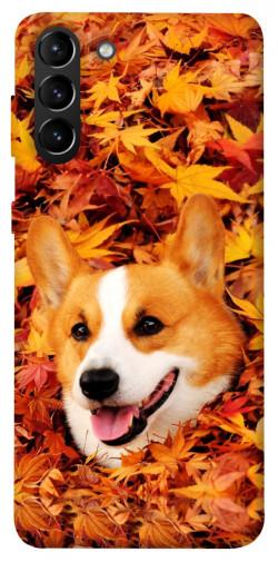 Чехол itsPrint Корги в листьях для Samsung Galaxy S21+