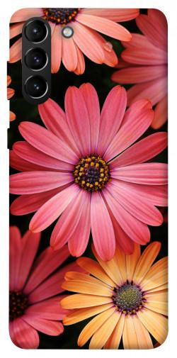Чехол itsPrint Осенние цветы для Samsung Galaxy S21+