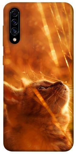 Чехол itsPrint Magic cat для Samsung Galaxy A50 (A505F) / A50s / A30s