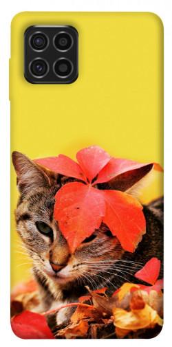 Чехол itsPrint Осенний котик для Samsung Galaxy M62