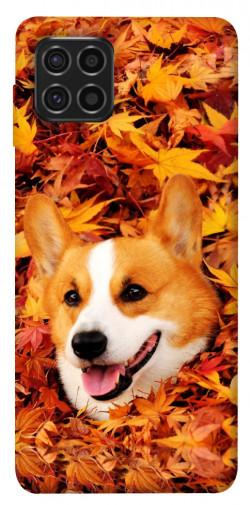 Чехол itsPrint Корги в листьях для Samsung Galaxy M62