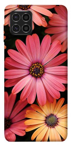 Чехол itsPrint Осенние цветы для Samsung Galaxy M62