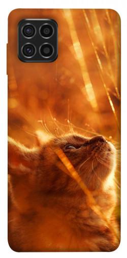 Чехол itsPrint Magic cat для Samsung Galaxy M62