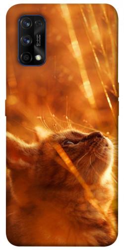 Чехол itsPrint Magic cat для Realme 7 Pro