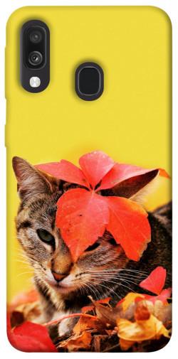 Чехол itsPrint Осенний котик для Samsung Galaxy A40 (A405F)