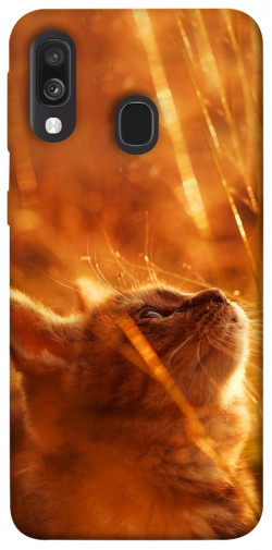 Чехол itsPrint Magic cat для Samsung Galaxy A40 (A405F)