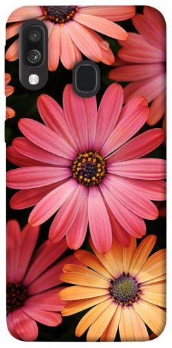 Чехол itsPrint Осенние цветы для Samsung Galaxy A40 (A405F)