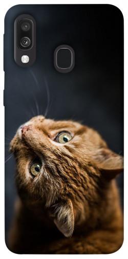 Чехол itsPrint Рыжий кот для Samsung Galaxy A40 (A405F)