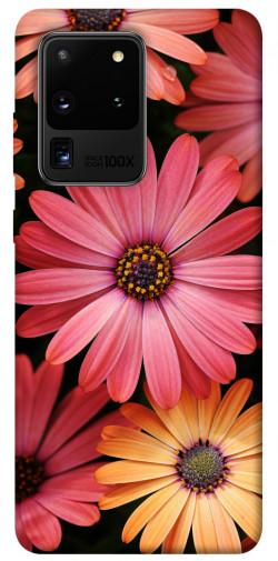 Чехол itsPrint Осенние цветы для Samsung Galaxy S20 Ultra