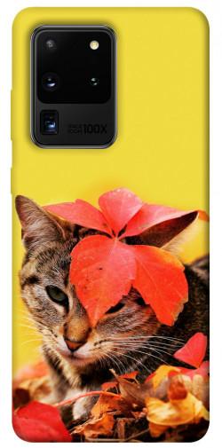 Чехол itsPrint Осенний котик для Samsung Galaxy S20 Ultra
