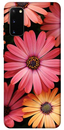 Чехол itsPrint Осенние цветы для Samsung Galaxy S20