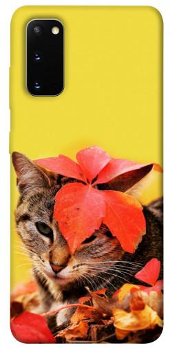 Чехол itsPrint Осенний котик для Samsung Galaxy S20