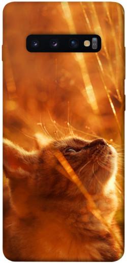Чехол itsPrint Magic cat для Samsung Galaxy S10+