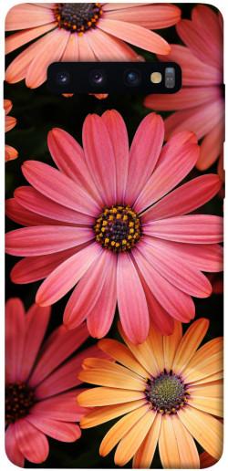 Чехол itsPrint Осенние цветы для Samsung Galaxy S10+