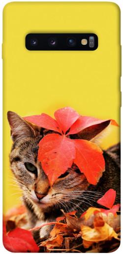 Чехол itsPrint Осенний котик для Samsung Galaxy S10+
