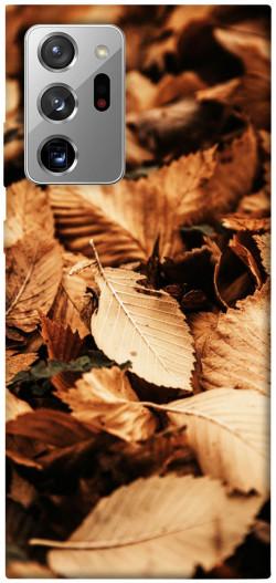 Чехол itsPrint Опавшая листва для Samsung Galaxy Note 20 Ultra