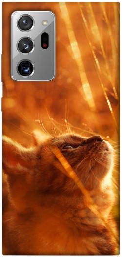 Чехол itsPrint Magic cat для Samsung Galaxy Note 20 Ultra