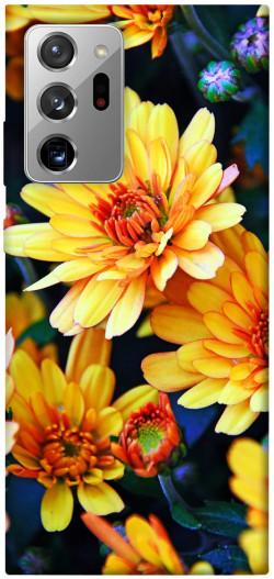 Чехол itsPrint Yellow petals для Samsung Galaxy Note 20 Ultra