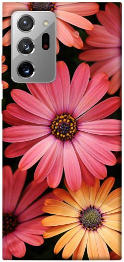 Чехол itsPrint Осенние цветы для Samsung Galaxy Note 20 Ultra