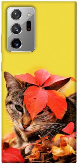 Чехол itsPrint Осенний котик для Samsung Galaxy Note 20 Ultra