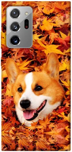 Чехол itsPrint Корги в листьях для Samsung Galaxy Note 20 Ultra