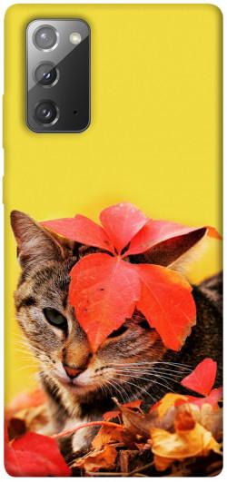 Чехол itsPrint Осенний котик для Samsung Galaxy Note 20
