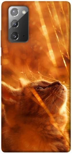 Чехол itsPrint Magic cat для Samsung Galaxy Note 20