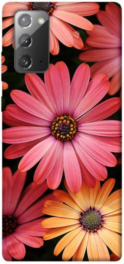 Чехол itsPrint Осенние цветы для Samsung Galaxy Note 20