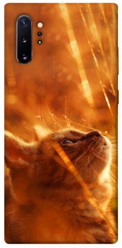Чехол itsPrint Magic cat для Samsung Galaxy Note 10 Plus