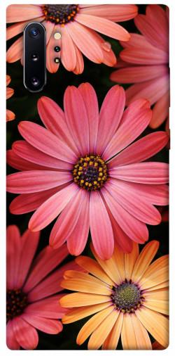 Чехол itsPrint Осенние цветы для Samsung Galaxy Note 10 Plus